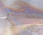 道ばたの虹1