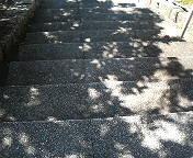 木陰の階段