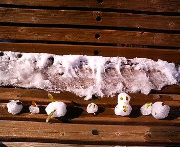 ミニ雪だるまと仲間たち