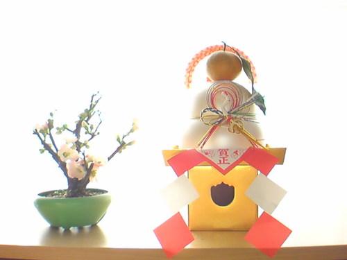鏡餅と木瓜の花